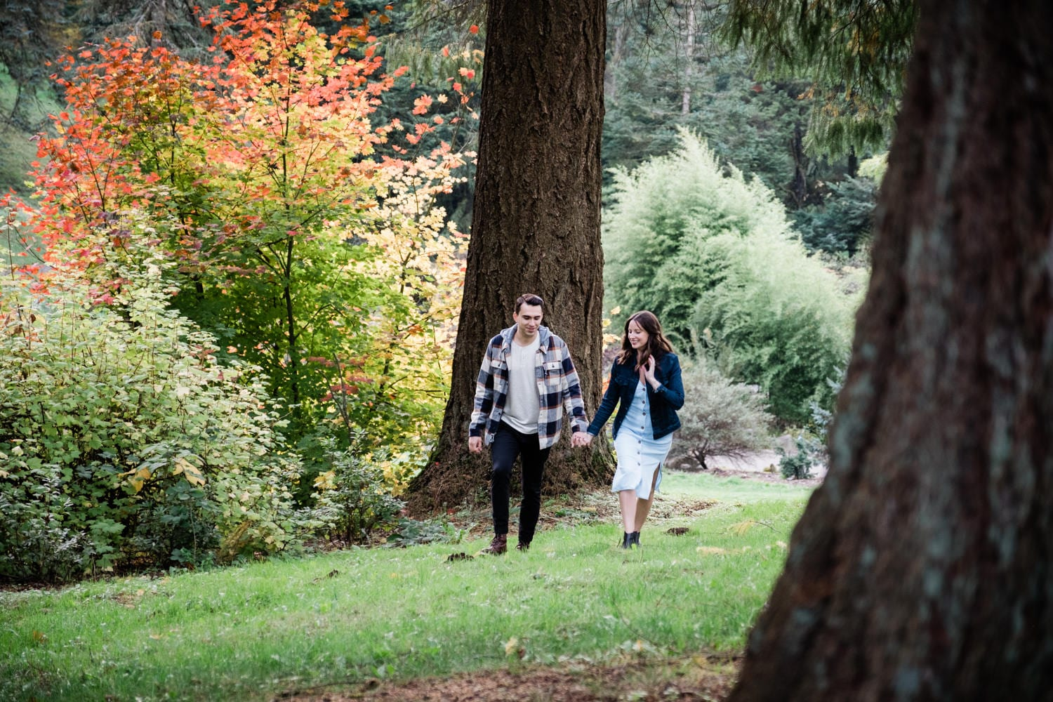 Forest Park Engagement Portland Oregon
